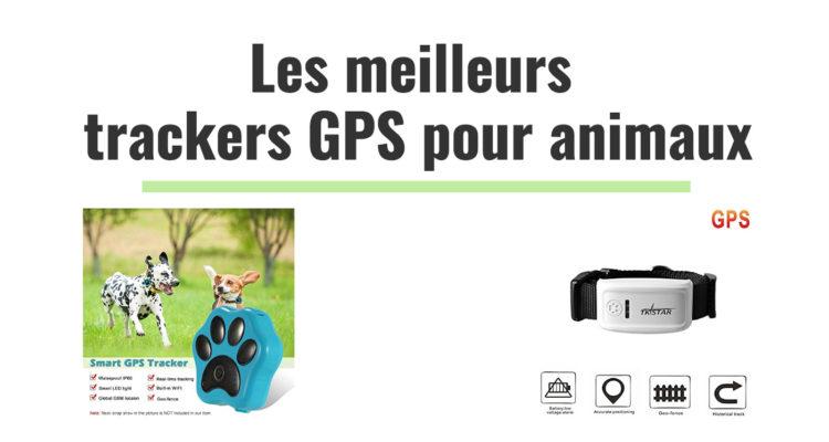 meilleurs trackeurs gps pour localiser animaux